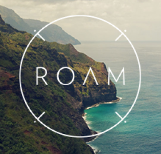cropped-roam-dribbble.png